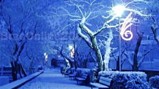 Zimsko vrijeme