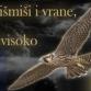 hasanbegovic-marija-dubravac-brisbane
