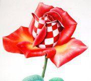 hrvatska-ruza