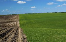 poljoprivreda - Hrvatska